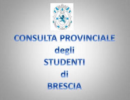 Intervista a Chiapparini e Fanetti, candidati per la Consulta, di S.Gregorini e E.Menici
