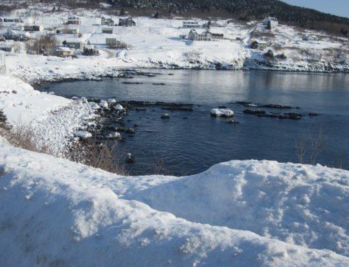 Atlantico più freddo e il futuro diventa glaciale