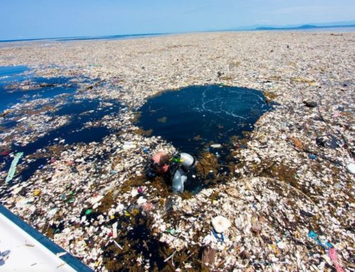 Il sogno di Slat: via la plastica dagli oceani
