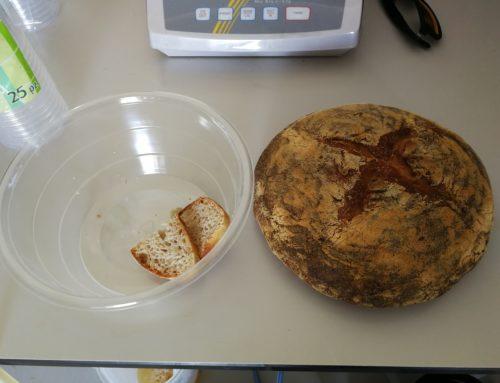 Unitus, ecco il pane senza colesterolo