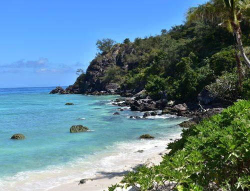 Ecco le Isole Fiji Benvenuti in paradiso