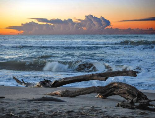 Lungo la spiaggia d'inverno aiuta a meditare