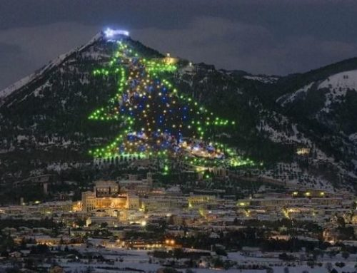 L'albero di Natale rende tutti più felici