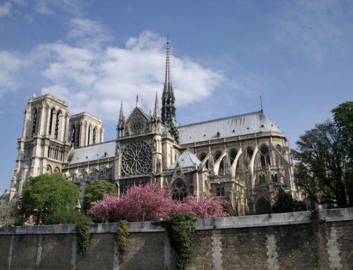 Notre Dame in fiamme, ma presto risorgerà