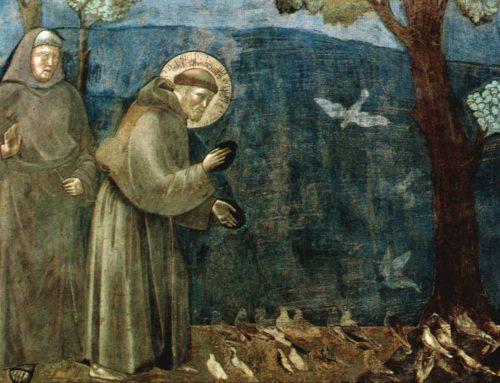 Nel saio di Francesco pezzi del mantello del vescovo