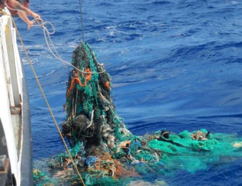Lotta alla plastica, pescatori eroi del mare