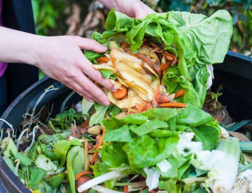 Gli sprechi alimentari, figli del consumismo