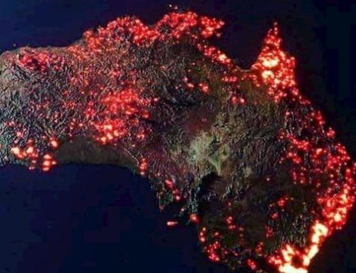 In Australia il più grande rogo mai visto