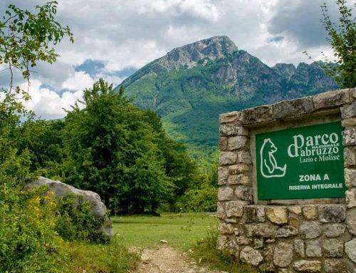 Parco d'Abruzzo, il mistero svelato