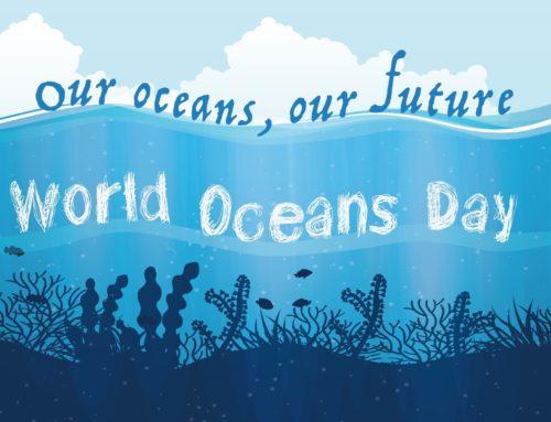 Oceani, ecco il respiro liquido della Terra