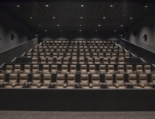 Il piacere di tornare a vedere un film al cinema