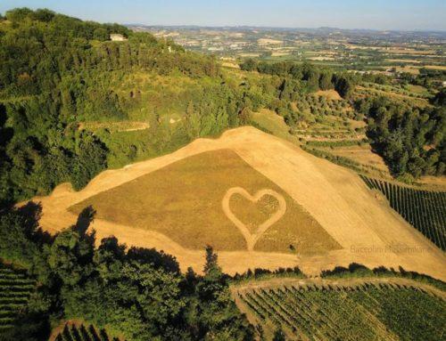 Bertinoro, spunta il grande cuore romagnolo
