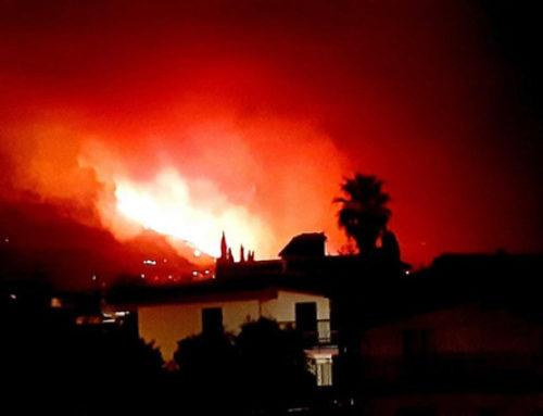 """Sicilia in fiamme: è un vero """"ecocidio"""""""