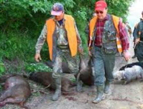 Con la caccia cresce il rischio Covid 19