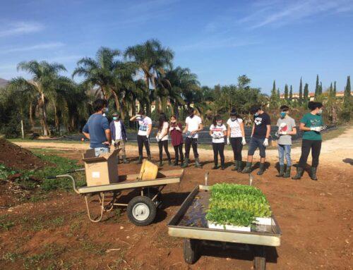 Impiantare un orto: a scuola dalla natura
