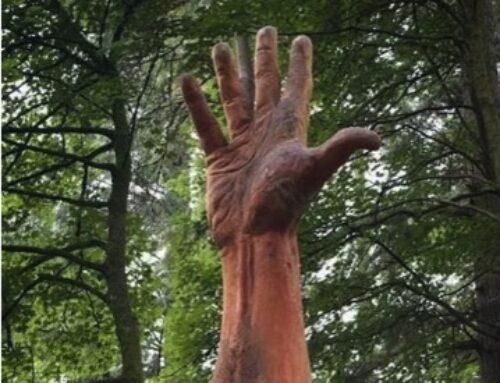 Chainsaw carving, la scultura con la motosega