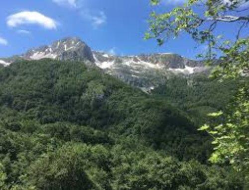 Terminillo, piste da sci al posto dei boschi