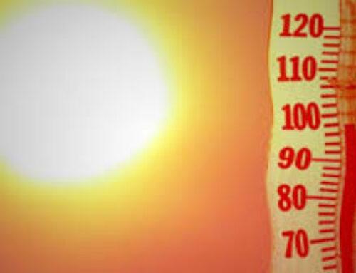 Riscaldamento globale, 2020 anno da record