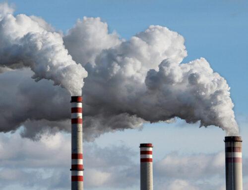 Ambiente, dieci anni per salvare il pianeta