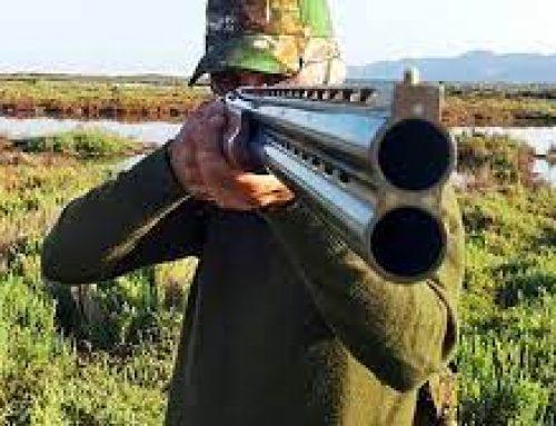 Referendum, raccolta firme contro la caccia